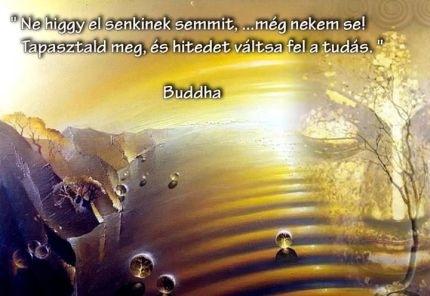 buddha idézetek képekkel Buddha idézetei