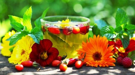 Szépítők - gyógynövények, olajok